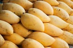 Dojrzała Mangowa tropikalna owoc Zdjęcia Stock