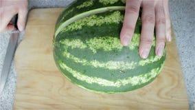 dojrzały melon rozebranego zbiory wideo