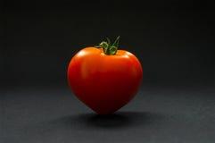 Dojrzały pomidor na ciemnym tle zdjęcie stock