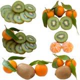 Dojrzały tangerine i kiwi. Fotografia Royalty Free