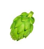 Dojrzały zielony karczocha warzywo Fotografia Stock