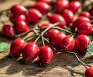 Dojrzali biodra lub dzikie różane jagody na drewnianym tle zdjęcie stock