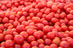 Dojrzali czereśniowi pomidory Obrazy Royalty Free