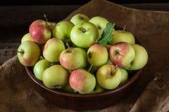Dojrzali czerwoni i zieleni jabłka na drewnianym tle Jabłka w pucharze Ogrodowe owoc Jesieni owoc Jesieni żniwo obraz stock