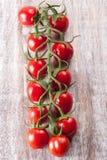 Dojrzali czerwoni pomidory Fotografia Stock