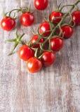 Dojrzali czerwoni pomidory Obraz Royalty Free