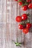 Dojrzali czerwoni pomidory Zdjęcia Stock