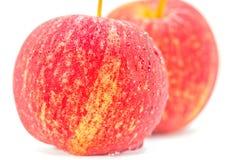 Dojrzali i świezi czerwoni jabłka Obraz Royalty Free