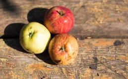 Dojrzali jabłka na drewnianym tle fotografia stock
