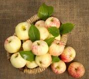 Dojrzali jabłka w pięknym łozinowym koszu Zdjęcia Royalty Free