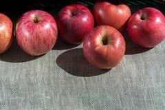 Dojrzali jabłka na brezentowym tle Zdjęcia Stock