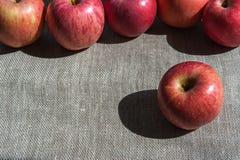 Dojrzali jabłka na brezentowym tle Obraz Royalty Free
