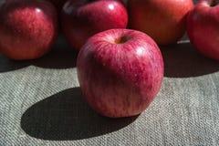Dojrzali jabłka na brezentowym tle Zdjęcie Stock