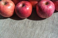 Dojrzali jabłka na brezentowym tle, odgórny widok Fotografia Stock