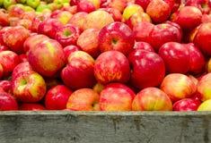 Dojrzali jabłka w drewnianej skrzynce fotografia stock