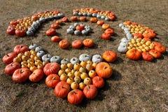 Dojrzali jesieni bani ornamenty na gospodarstwie rolnym Obrazy Stock