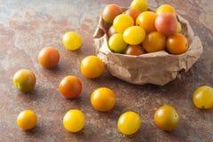Dojrzali organicznie kolorowi mini pomidory zdjęcia royalty free