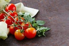 Dojrzali organicznie pomidory z ziele oregano Obraz Royalty Free