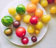 dojrzali pomidory - organicznie warzywa i zdrowy łasowanie projektowali pojęcie zdjęcie stock