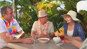 Dojrzali przyjaciele podczas aperitif zbiory