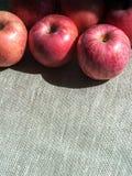 Dojrzali różowi jabłka na brezentowym tle, odgórny widok Fotografia Royalty Free