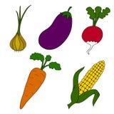Dojrzali warzywa na białym tle Ilustracji