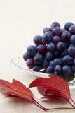 Dojrzali winogrona Obrazy Royalty Free