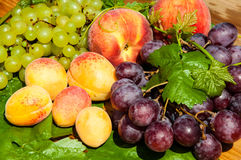 Dojrzali winogrona i owoc Fotografia Royalty Free