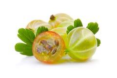 Dojrzali zieleni agresty z liśćmi odizolowywającymi na bielu Fotografia Stock