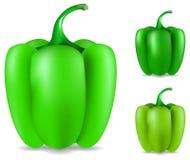 dojrzały zielony pieprz Obraz Stock
