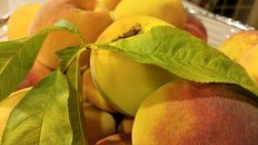 Dojrzewa brzoskwinie na owocowym koszu Obraz Stock