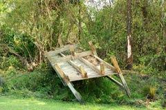 doków drzewa Obrazy Stock