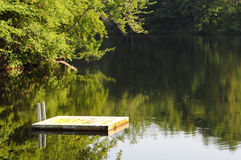 Dok in het meer Stock Afbeelding