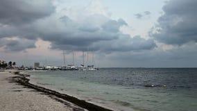 Dok i morze zbiory