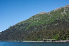 Dok in Prins William Sound stock afbeeldingen