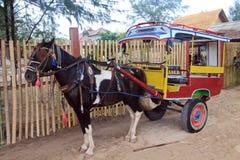 'Dokar' drog den så kallad vagnen vid hästen, Indonesien Royaltyfria Bilder