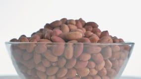 Dokrętka arachid wiruje na turntable zbiory