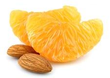 dokrętek segmentu tangerine Fotografia Stock
