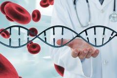 Doktor, der auf DNA-Strang 3D und Zellen einwirkt Stockbilder