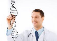 Doktor, der DNA-Molekül auf virtuellem Schirm zeichnet Stockfoto