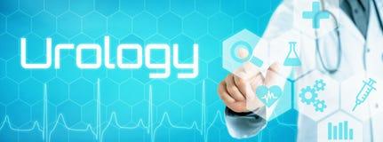 Doktor, der eine Ikone auf einer futuristischen Schnittstelle - Urologie berührt lizenzfreies stockbild