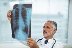 Doktor, der einen Röntgenstrahlbericht überprüft Lizenzfreie Stockfotografie