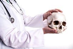 Doktor, der einen Schädel in seinen Händen hält stockfoto