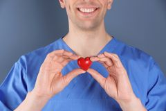 Doktor, der kleines Herz, Nahaufnahme hält stockfotos