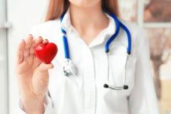 Doktor, der kleines rotes Herz, Nahaufnahme hält stockfoto
