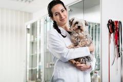 Doktor, der kranken Welpen trägt lizenzfreie stockbilder
