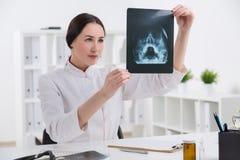 Doktor, der Röntgenstrahl betrachtet Stockbilder
