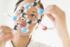 Doktor Examining Molecular Structure i laboratorium Fotografering för Bildbyråer