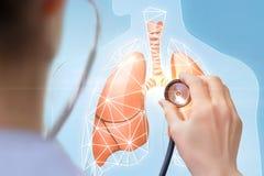 Doktor hört auf das Modell von menschlichen Lungen Lizenzfreie Stockfotos