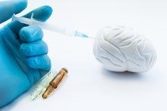 Doktor leitet Gehirnbehandlung, indem er Medikation unter Verwendung der Spritze im Organ des Modells 3D einspritzt Konzeptfoto,  Lizenzfreie Stockfotografie